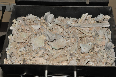 Cremation pre-processed remains